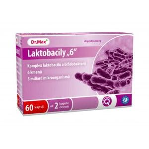 Laktobacily 6